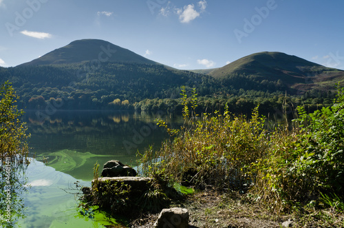 Loweswater algal bloom