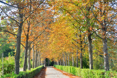 Aranjuez gardens, Madrid (Spain)
