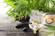 Orchids on stone with candle spa concept background on white