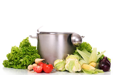 Fresh tasty vegetables with pan and soup ladle