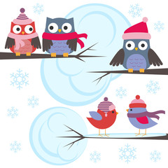 Owls and birds in winter forest