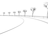 bend in a road in 3d in wire poster