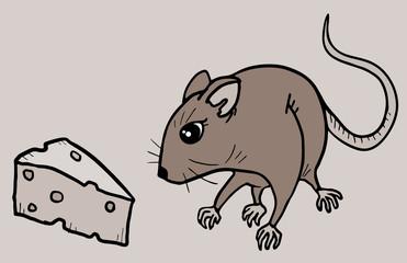 Food rat