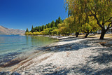 Shore of Lake Wakatipu, New Zealand