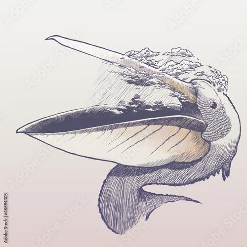 Obraz na płótnie Deszczowe pelikan