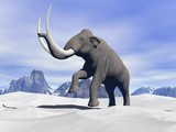 Mammoth in the snow