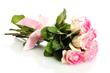 beautiful bouquet of pink roses isolated on white