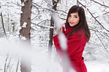 Beautiful elegant woman in red coat. winter nature