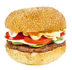 Beef burger with tomatoes,cucumber and onion
