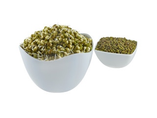 Sprouts of green grams in a bowl