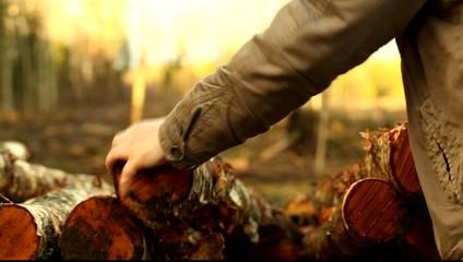 Lumberjack trying to sort of sawn timber