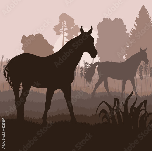 Horses in field vector background