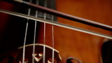 Cello: Cellist sustaining her bowing with vibrating strings