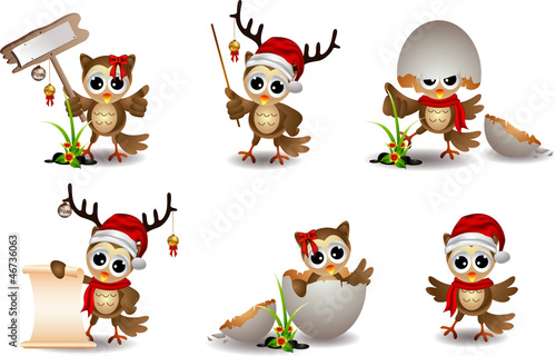 cute baby owl with christmas costum