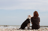 beautiful young woman sitting with dog looking at the sea