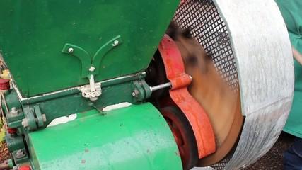 Apfelschreddermaschine