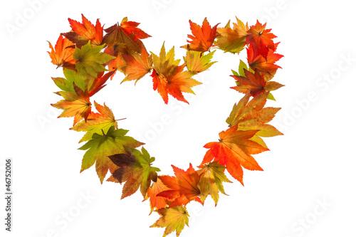 Bunte Herbstblätter in Herzform