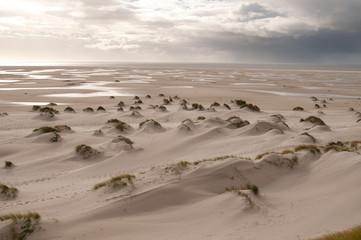 Insel Amrum, Küste 4