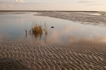 Wattenmeer 16 - Wadden Sea