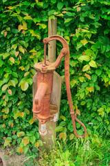 Alte Wasserpumpe im Garten