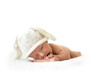 cute newborn baby bunny in the cap on white background