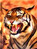 Angry Face Tiger Portrait Painting