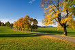 Indian Summer, Warngau, Straße, Weg, Kurve,
