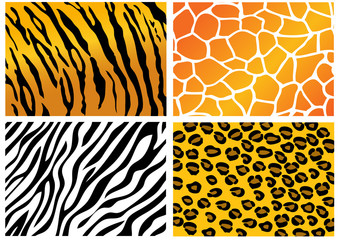 Animal Skin pattern background