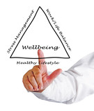 Diagram of wellbeing poster