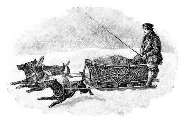 Traditional Russian/Siberian Sled - Traîneau