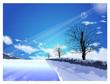 The path of the light shining in winter. Winter Season backgroun