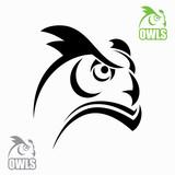 Horned owl head