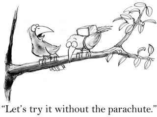 Birds try flying without a parachute