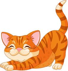 Cute kitten stretching