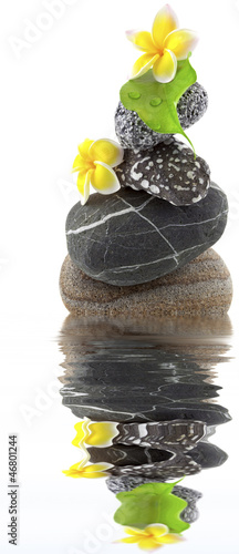 fleurs jaunes de frangipanier sur galets