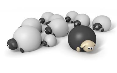 Black Sheep Characters
