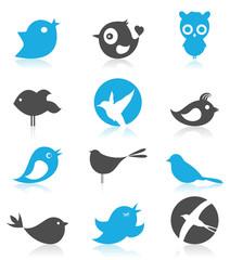 Birdie7