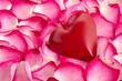 Herz im Rosenblättermeer