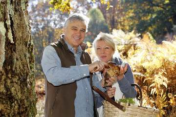 Senior couple in forest holding ceps mushrooms