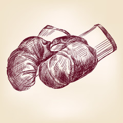 boxing gloves hand drawing