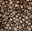 Kaffeebohnen - Sepia - Schwarz weiß