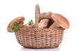 edible mushroom on basket