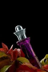 purple,perfume,and,autumn,leaves