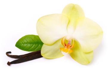 Vanilla sticks with flower