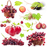 Collection of red grapes, bottle and cork Isolated on white
