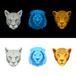 big cat set-lion, puma, jaguar