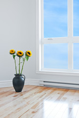 Sunflowers in empty room with big window
