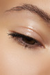 Eye with natural makeup. Moisturizing gel on eyelid