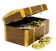 Gold coins in chest box