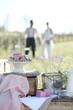 vintage pärchen macht picknick